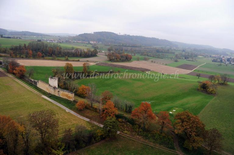 Prospection-Avenches01-FL