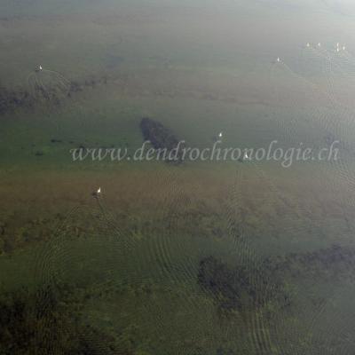 Prospection-Marin-32-FL