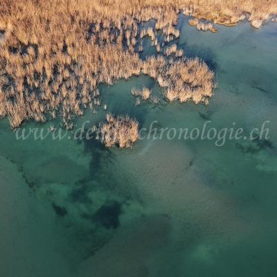 Prospection-Marin06-FL
