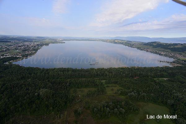 Lac de morat 1