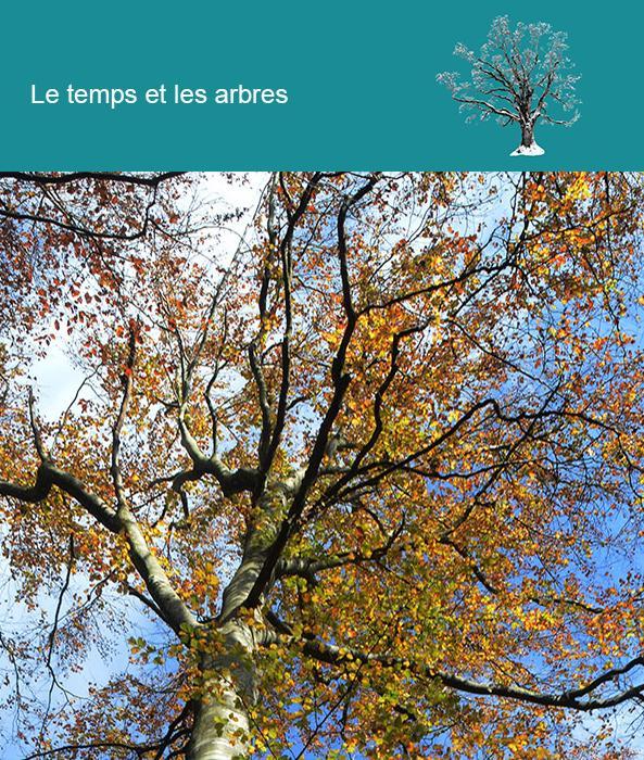 Le temps et les arbres
