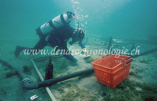 Plongee 1