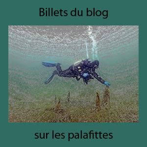 Plongeur blog